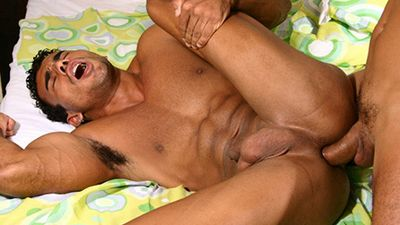 Juicy Boys download